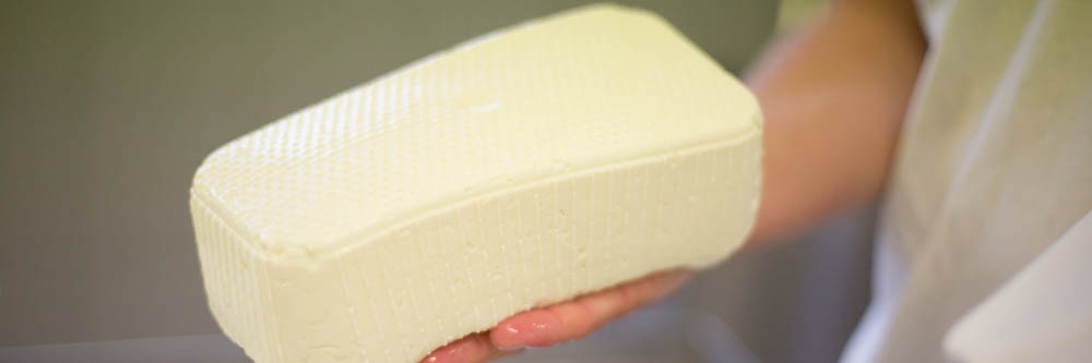Herstellung von Schafskäse